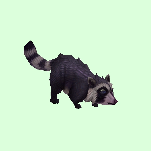 Raccoon2Dark.jpg