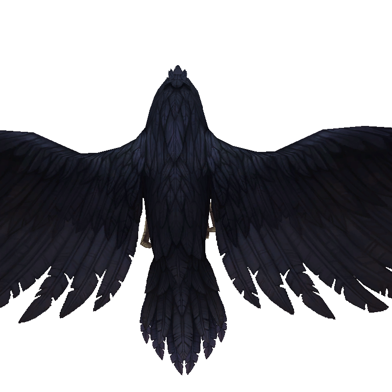 raven2_black-fixed.png