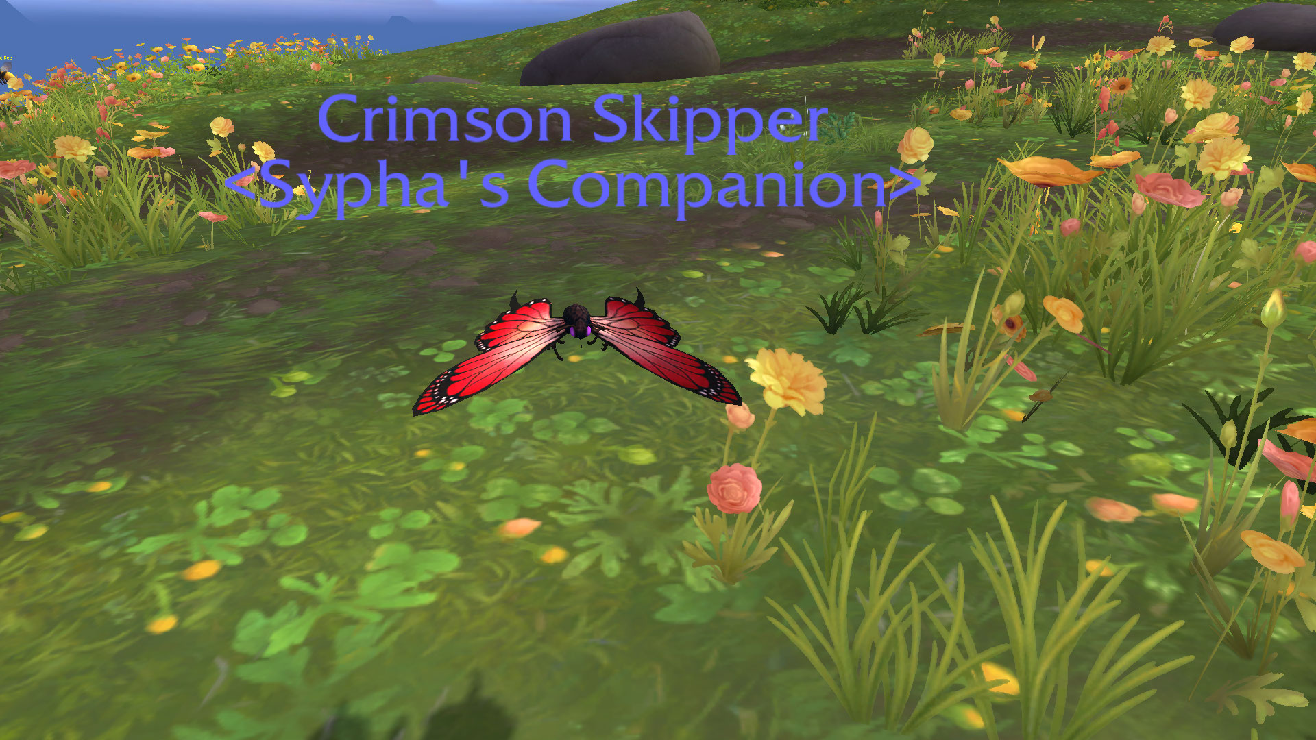 CrimsonSkipper.jpg